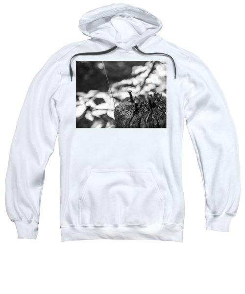 Nails Sweatshirt