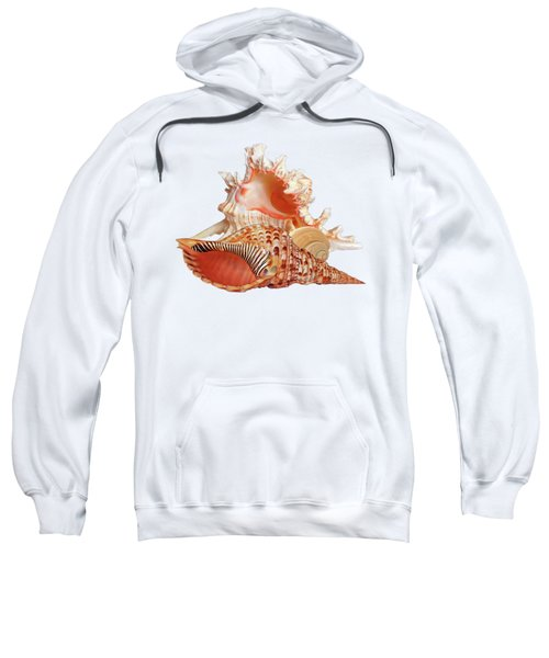 Natural Shell Collection On White Sweatshirt