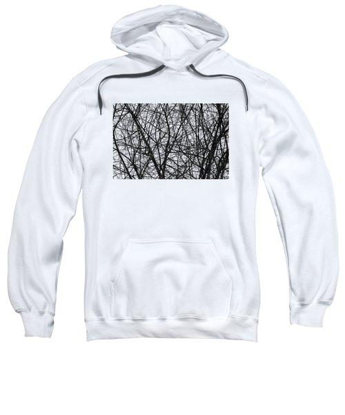 Natural Trees Map Sweatshirt by Konstantin Sevostyanov