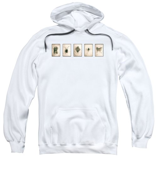 Nature Series Sweatshirt