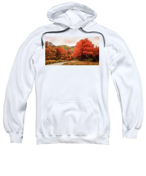 Nature's Palette Sweatshirt