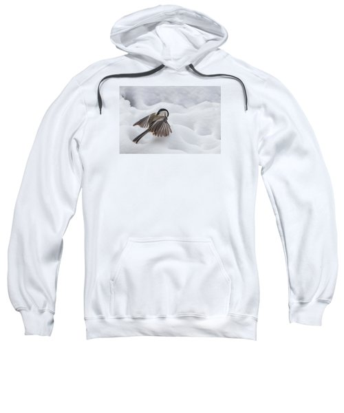Chickadee - Wings At Work Sweatshirt