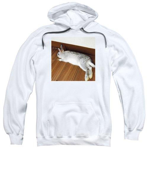 Nobiusa Sweatshirt by Nao Yos