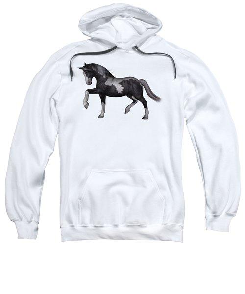 North Star Sweatshirt