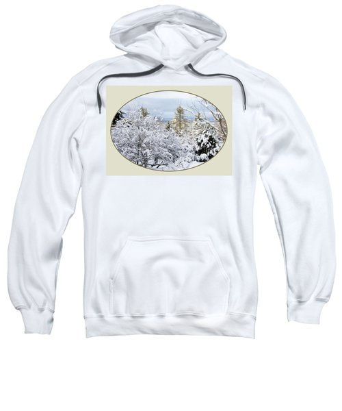 northeast USA photography button Sweatshirt
