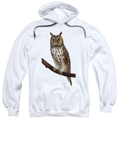 Northern Long-eared Owl Asio Otus - Hibou Moyen-duc - Buho Chico - Hornuggla - Nationalpark Eifel Sweatshirt