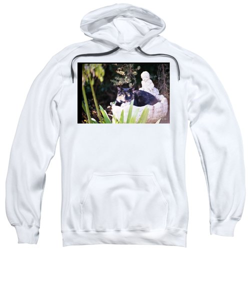 Not Just For The Birds Sweatshirt
