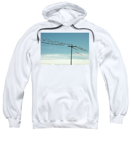 Not Like The Others Sweatshirt by Todd Klassy