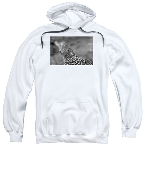 Sweatshirt featuring the photograph Not Your Chicken Dinner by Lora Lee Chapman