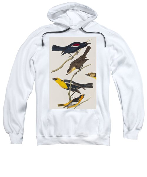 Nuttall's Starling Yellow-headed Troopial Bullock's Oriole Sweatshirt