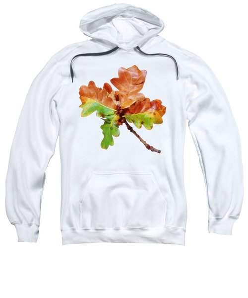 Oak Leaves Autumn Glow Sweatshirt