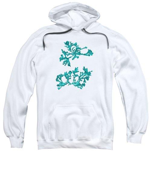 Sweatshirt featuring the mixed media Ocean Seaweed Plant Art Phyllophora Rubens by Christina Rollo