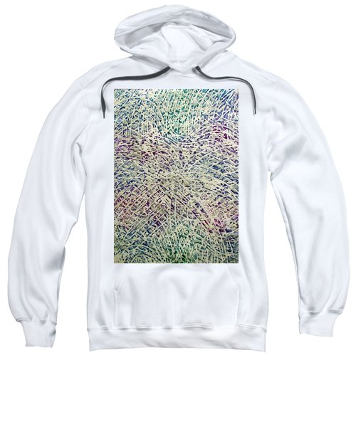 34-offspring While I Was On The Path To Perfection 34 Sweatshirt