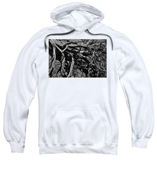 Old Sagebrush Sweatshirt