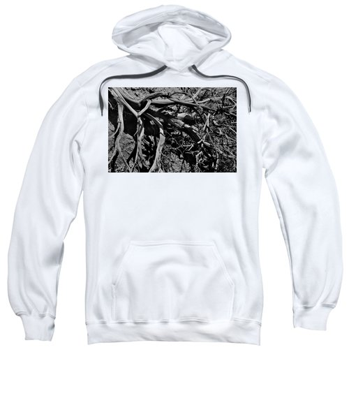 Old Sagebrush Sweatshirt