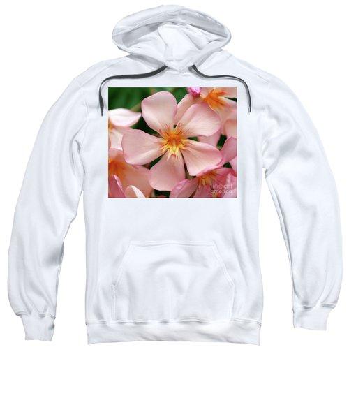 Oleander Dr. Ragioneri 1 Sweatshirt