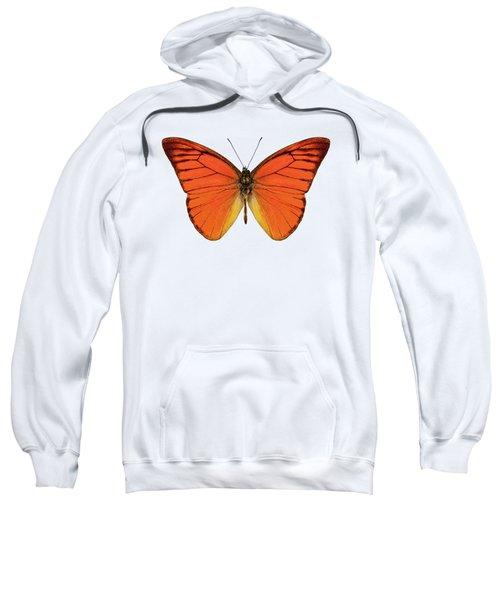 Orange Butterfly Species Appias Nero Neronis  Sweatshirt