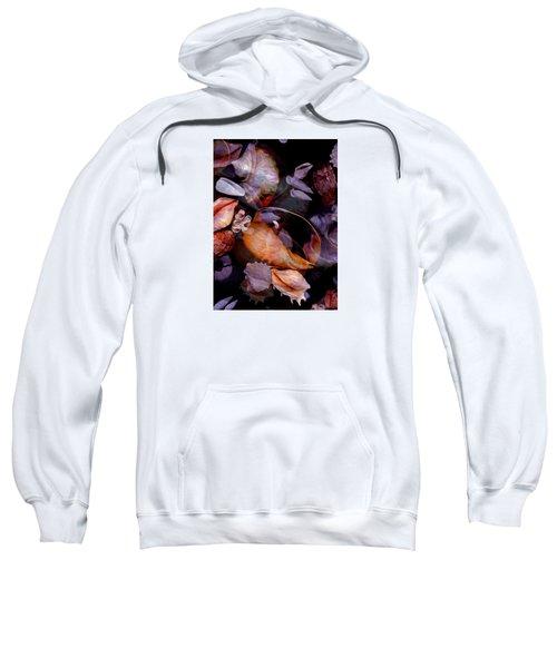 Orbiting Seashells Sweatshirt