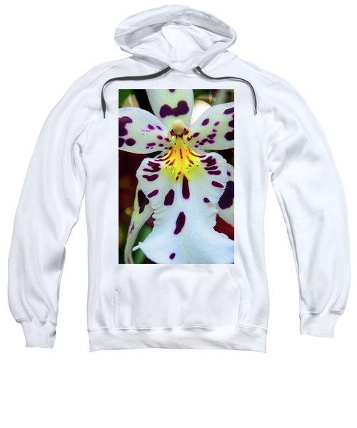 Orchid Cross Sweatshirt