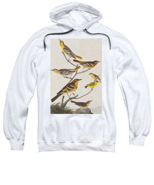 Orioles Thrushes And Goldfinches Sweatshirt