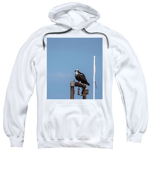 Osprey Having Lunch Sweatshirt