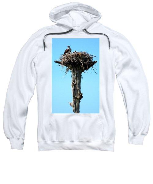 Osprey Point Sweatshirt by Karen Wiles