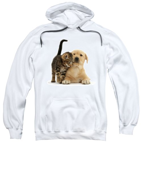 Over Friendly Kitten Sweatshirt
