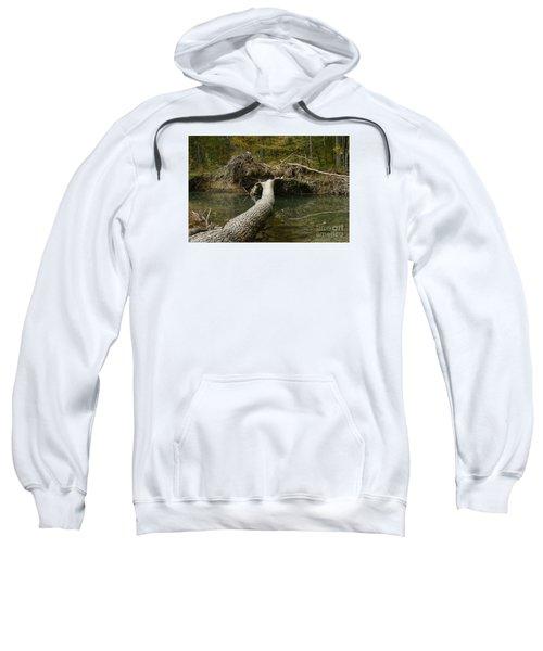 Over On Clover Sweatshirt