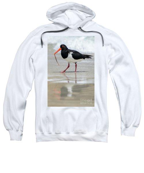 Oystercatcher 03 Sweatshirt