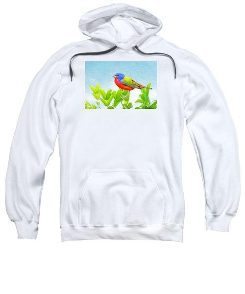 Painted Bunting Sweatshirt