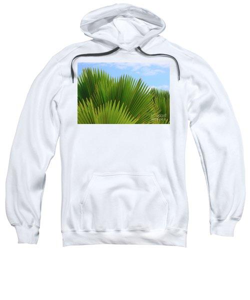 Palm Fans Sweatshirt