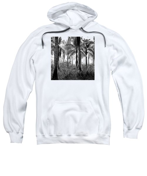 Palm Trees - Black And White Sweatshirt