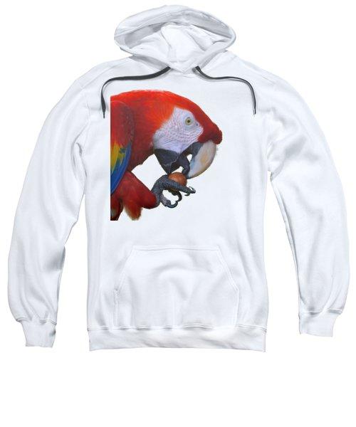Parrot Having A Snack Sweatshirt