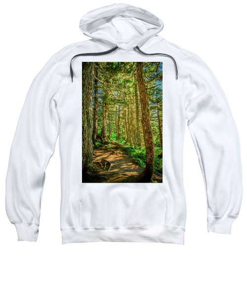 Path In The Trees Sweatshirt