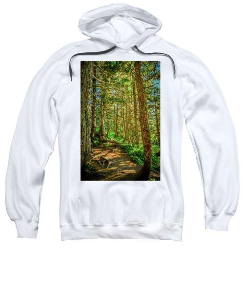 Path In The Trees Sweatshirt