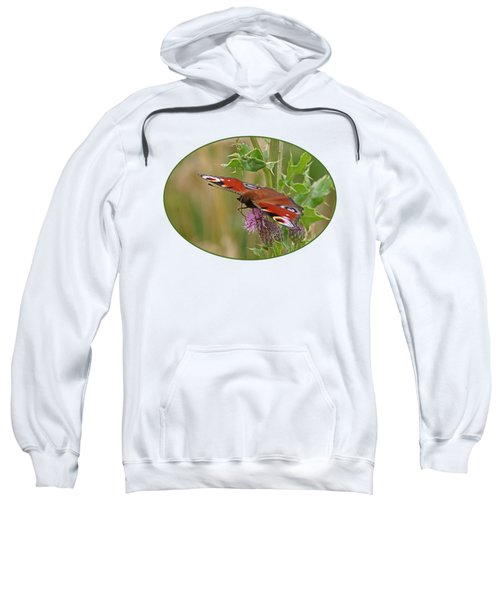 Peacock Butterfly On Thistle Sweatshirt