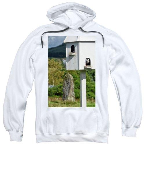Peek-a-doo Sweatshirt