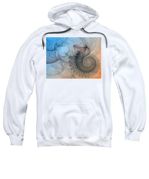 Pefect Spiral Sweatshirt
