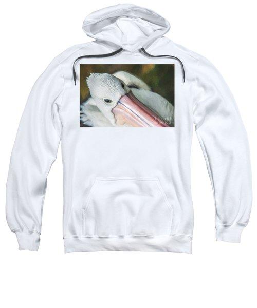 Pelican Brief   Go6 Sweatshirt