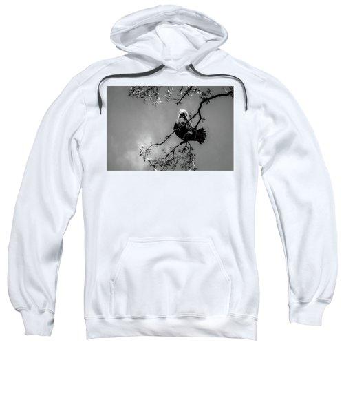 Pelican Connection Sweatshirt