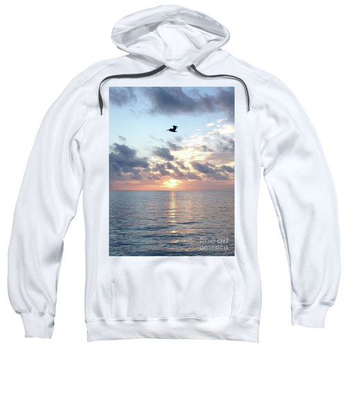 Pelican Dawn Sweatshirt