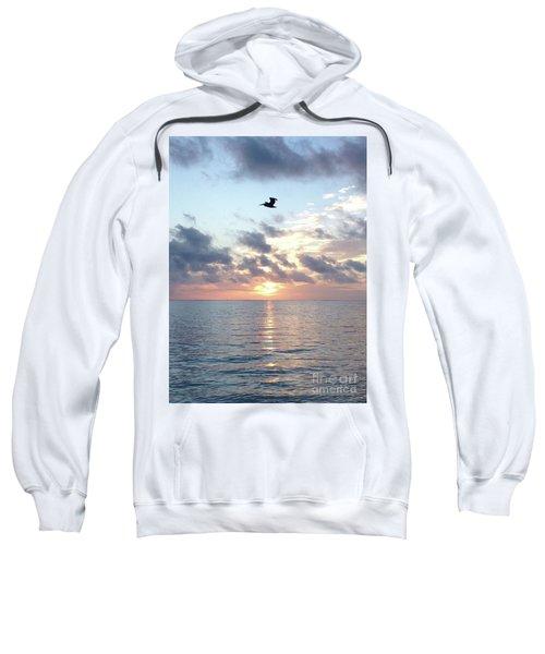 Pelican Dawn Sweatshirt