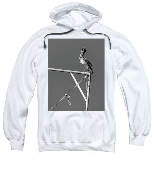 Pelican In Black And White Sweatshirt