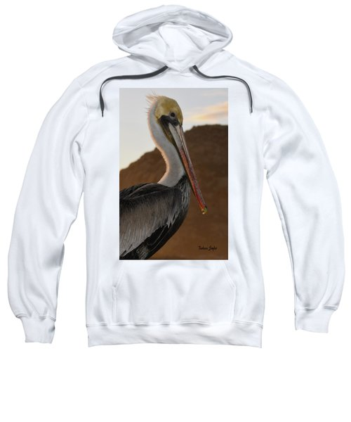 Pelican Portrait Sweatshirt