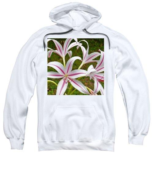 Peppermint Lilies Sweatshirt