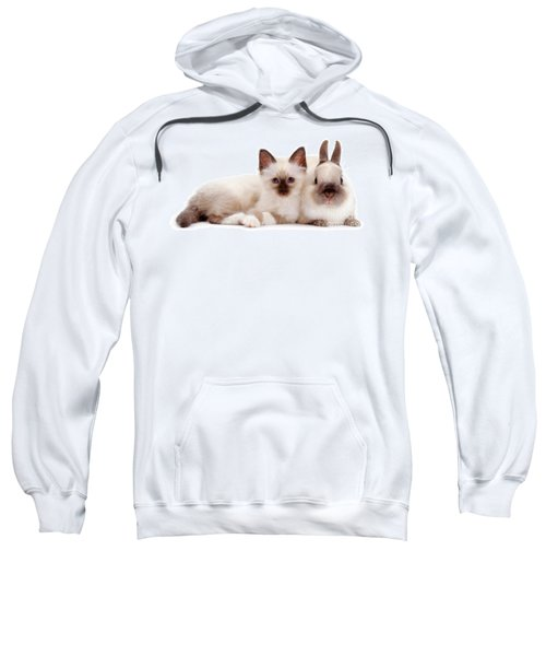Perfectly Paired Pals Sweatshirt