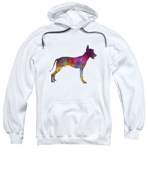 Peruvian Hairless Dog In Watercolor Sweatshirt by Pablo Romero