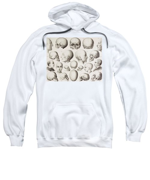 Phrenological Illustration Sweatshirt
