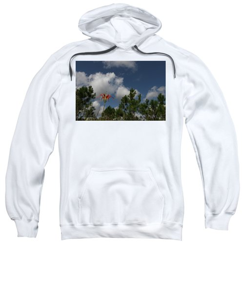 Pine Lily And Pines Sweatshirt