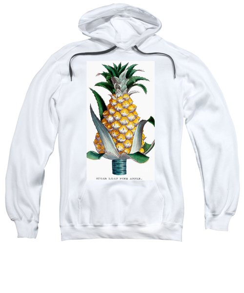 Pineapple, 1789 Sweatshirt